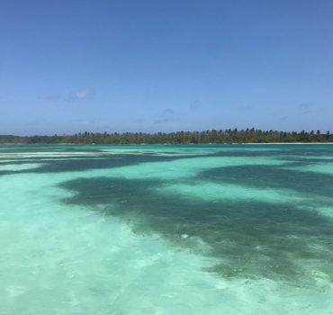 Tobago_2931